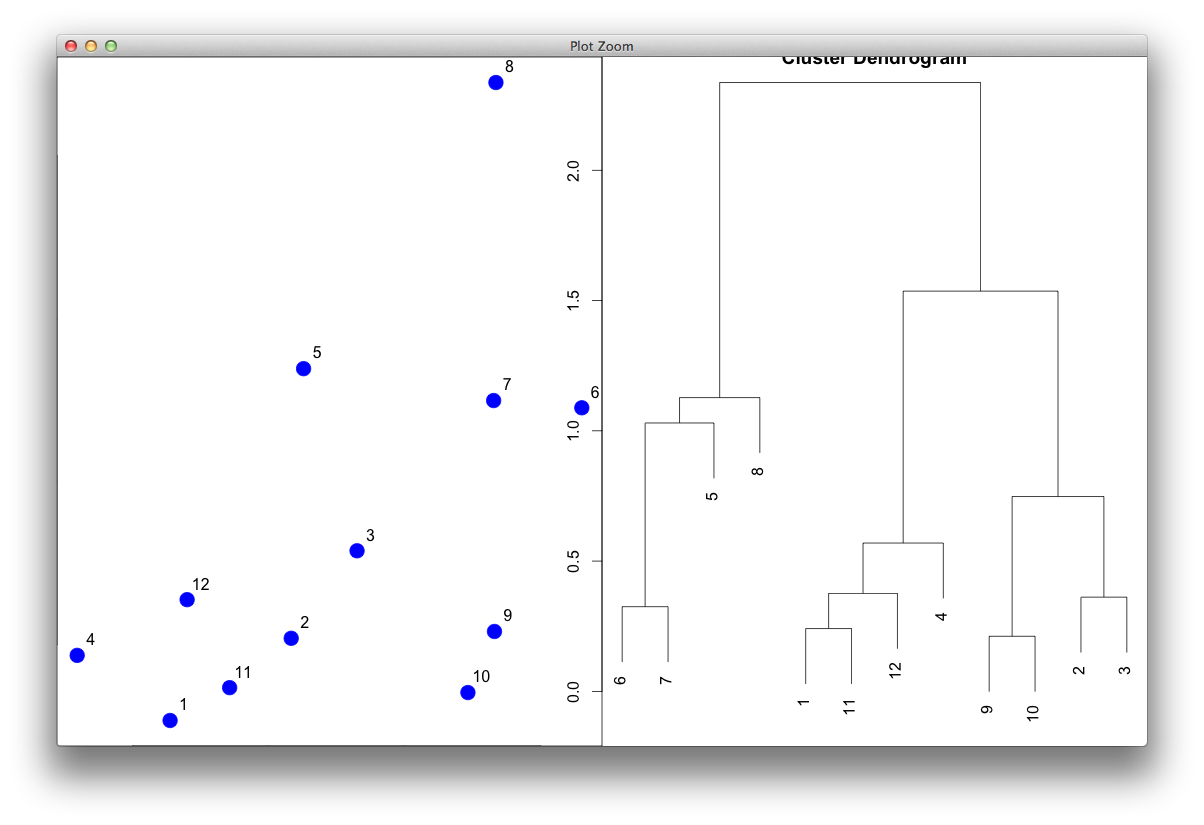 Reordering phylogenetic tree branches using R | Visual Data